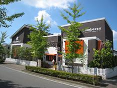 ブルーベリー お店の写真